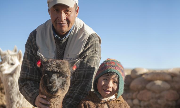 samaritan's Purse Give Sheep
